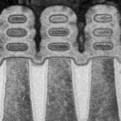 Počítačové čipy a hranice pokroku: kam spěje polovodičový průmysl?